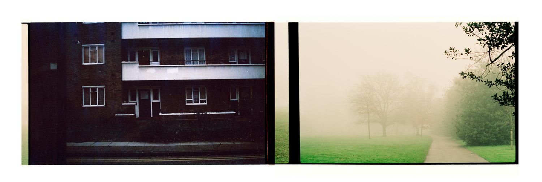 Garden Fragments. Archival inkjet print on hahnemühle photo rag. 100.7x27.3cm. 2008-2015