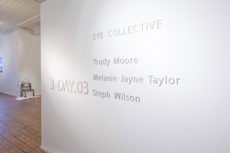 2011-eye-ca-final-web.jpg