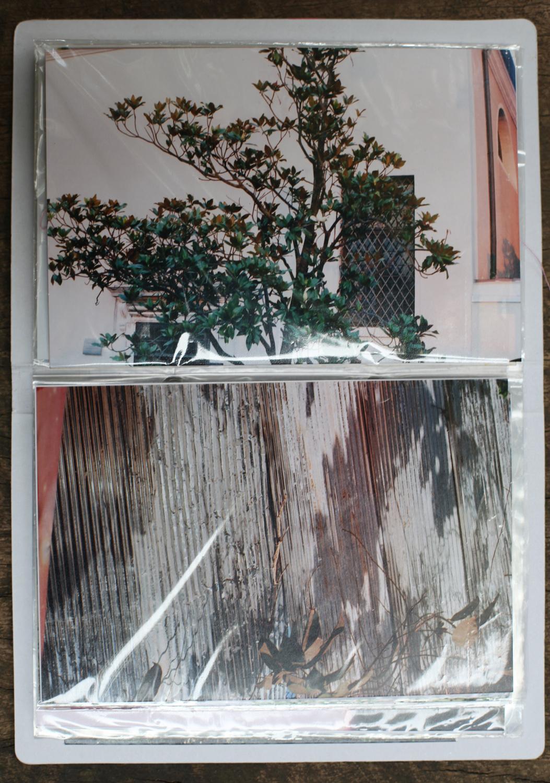 melanie-jayne-taylor-concretepost-2015-6.jpg