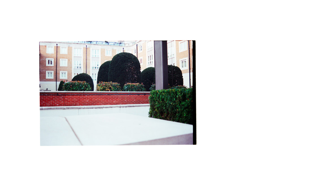 To Fall Upon the Hedges, 2012. Archival Inkjet Print on Hahnemühle Photo Rag. 112x60cm. Edition of 5 + 2 Ap.