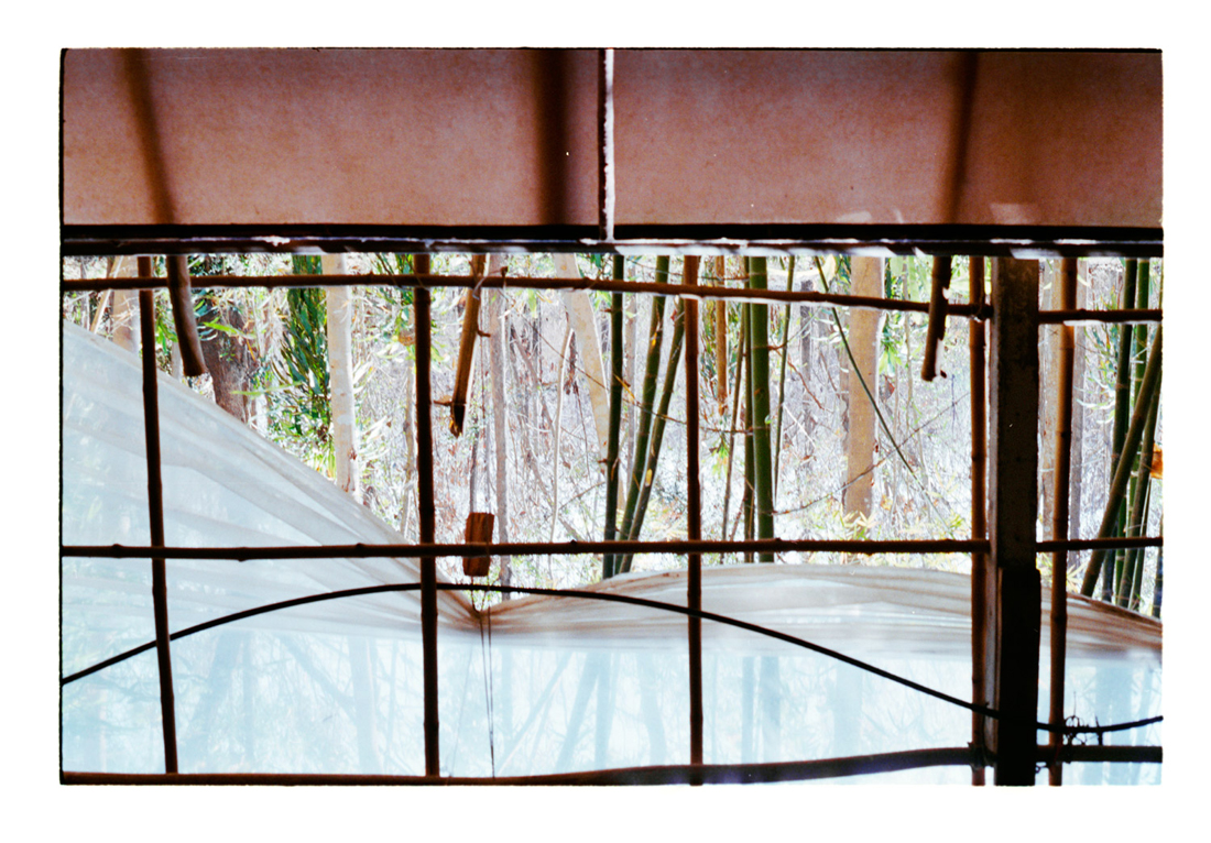 The Gesture in Geometry [The Bamboo Forests], 2012. Archival Inkjet Print on Hahnemühle Photo Rag. 112x78cm. Edition of 3 + 2 Ap.