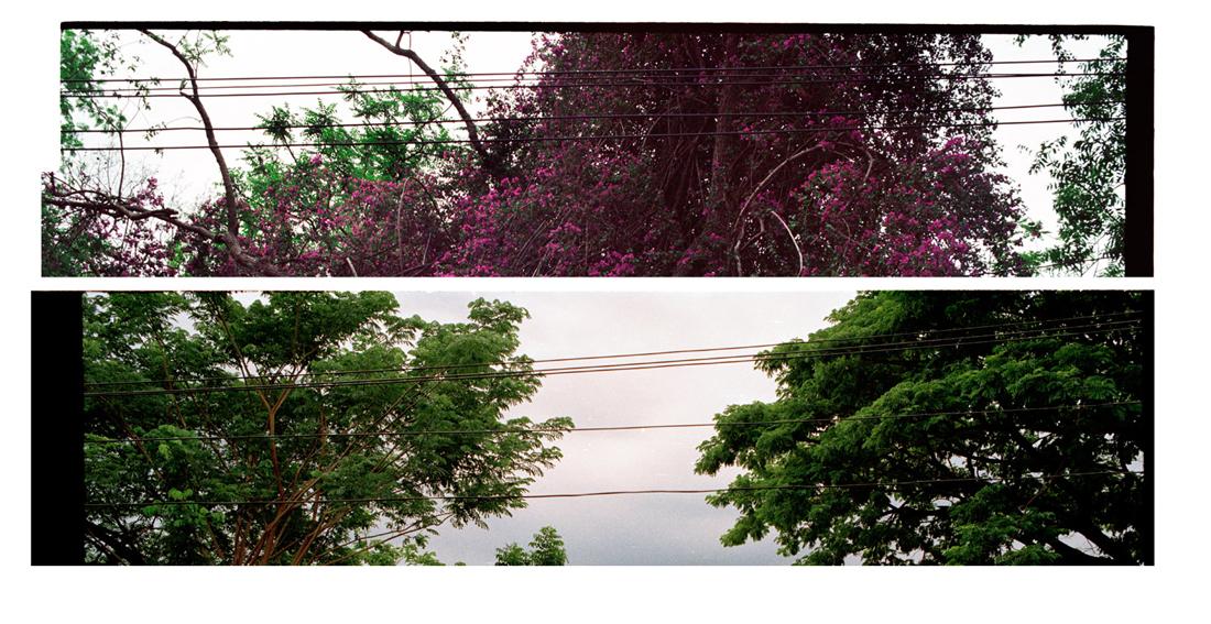 Sky, Lines. 2010 [2011]. Archival Inkjet Print on Hahnemühle Photo Rag. 110 x 30cm. Edition of 5 + 2 Ap.
