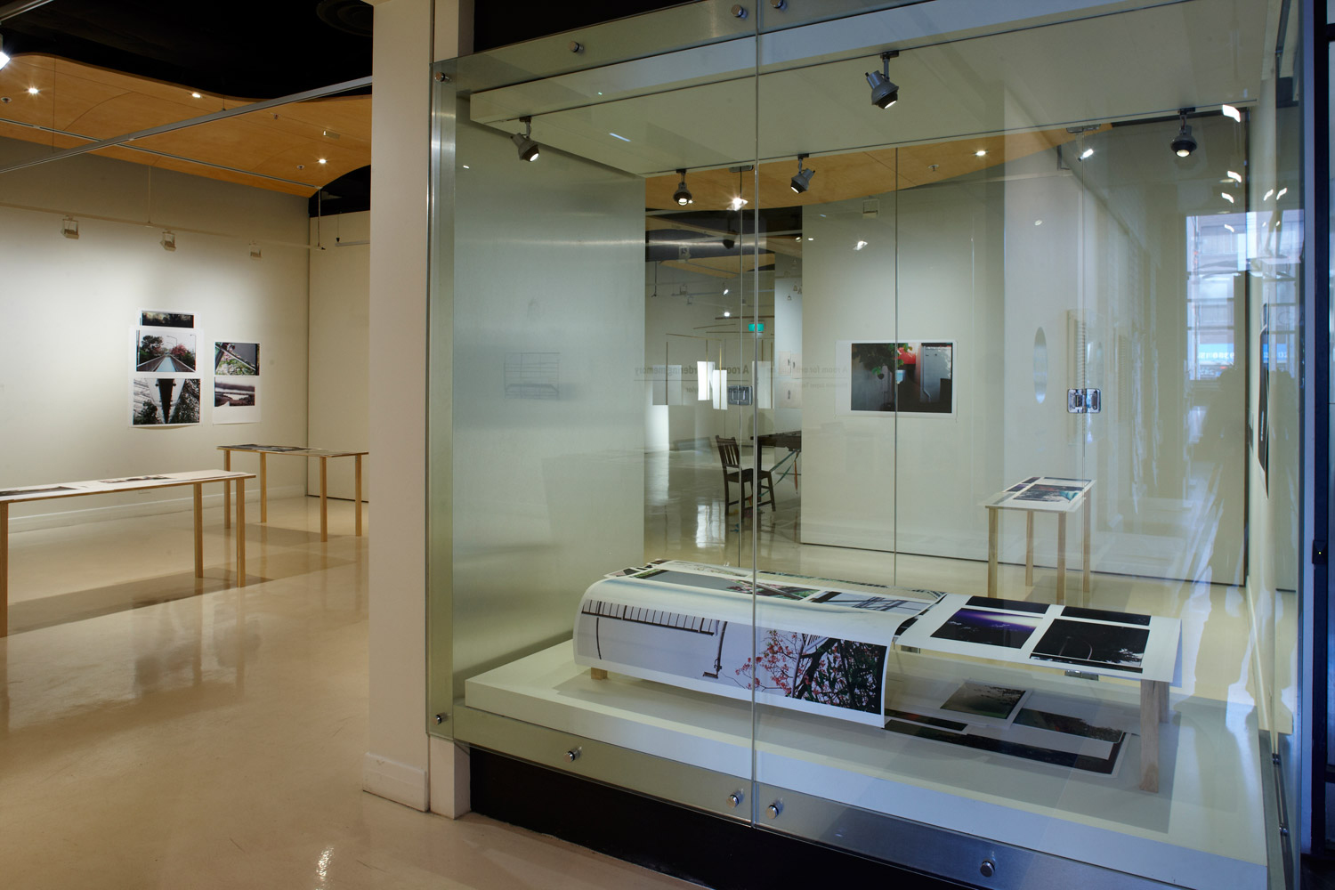 Display Case - 'Too Dark To Deal WIth Now' - Installation View. 2012. Counihan Gallery.