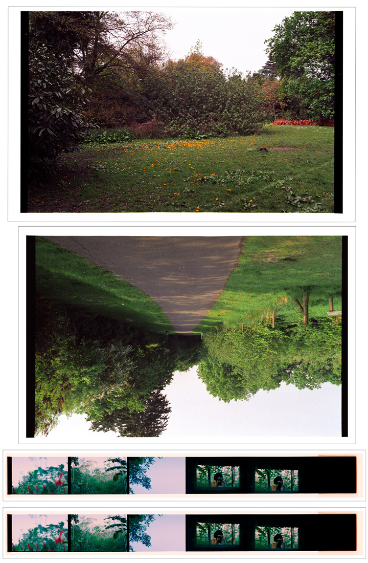 Summer Structure. 2007-2010. Archival Inkjet Print on Hahnemühle Photo Rag. 112x75cm. Edition of 5 + 2 Ap.