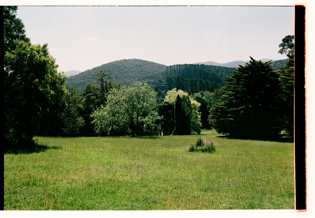 Garden Composure. 2009. Archival Inkjet Print on Hahnemühle Photo Rag. 45x33cm. Edition of 5 + 2 Ap.