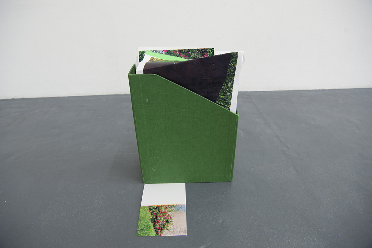Green Files: [Spilling out over the Edge], contains photographic prints, related to bougainvillea's and hedges (and all that they meant). Installation View Detail. Blindside, Melbourne. 2016