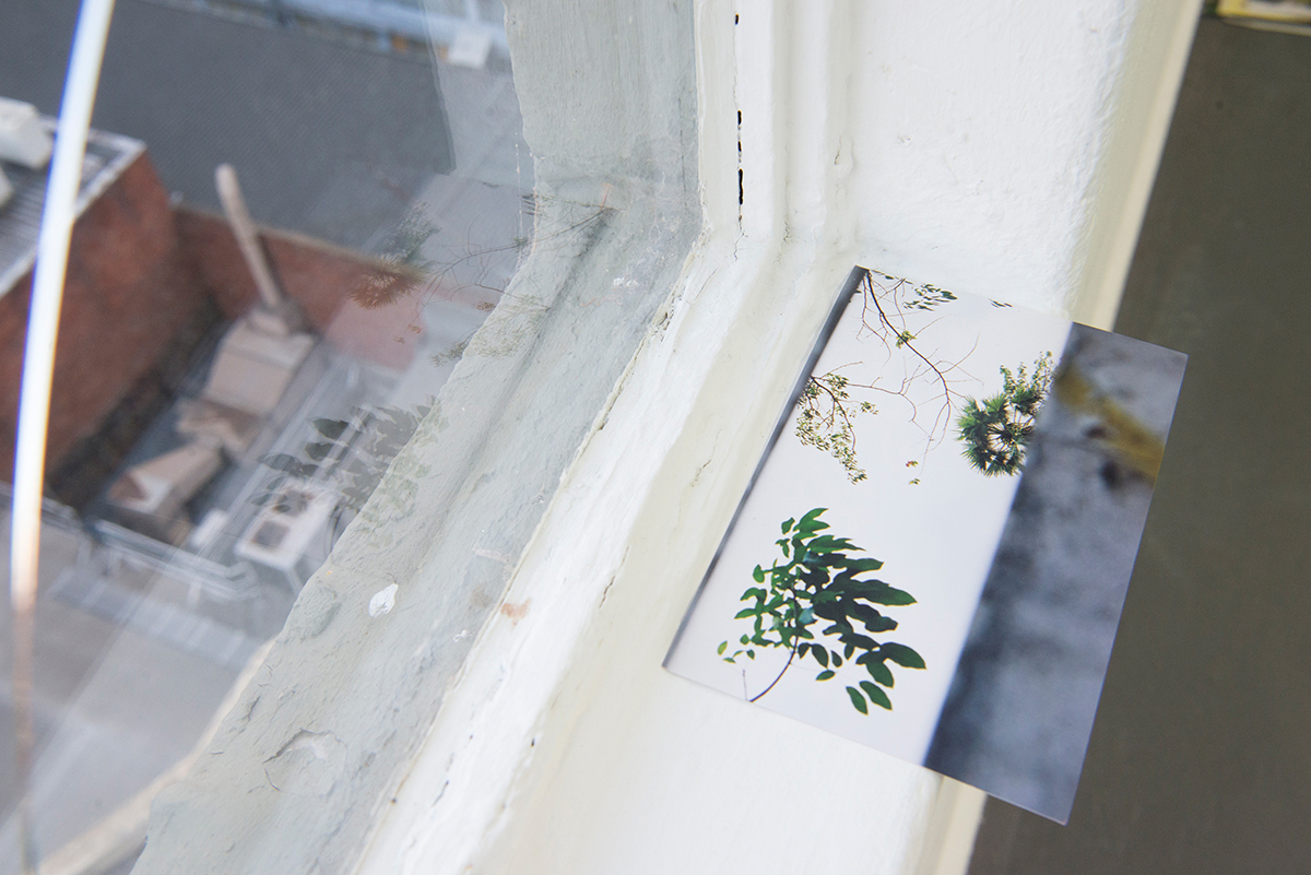 The Window Ledge/ The window's edge. Installation View Detail. Blindside, Melbourne 2016.