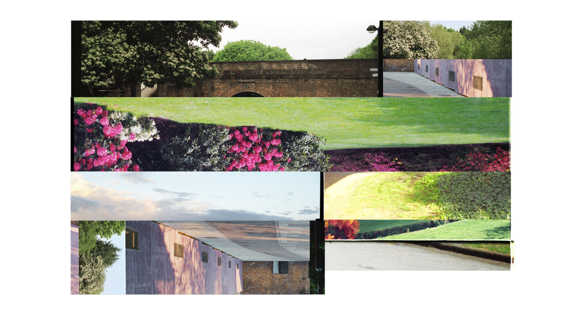 Garden Fragments (New Again) 2008-2016. (English Parks and Gardens) Archival inkjet print on Hahnemuhle Photo Rag. 111x60cm. Edition of 5 + 2 AP.