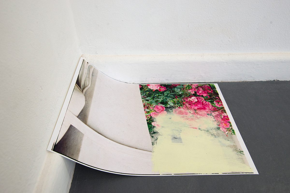 'Series 4: Formal Gardens [Fell Apart]. Item 4.1 French roses [creamy pink] and pushed up into the corner. Installation View Detail. Blindside, Melbourne. 2016