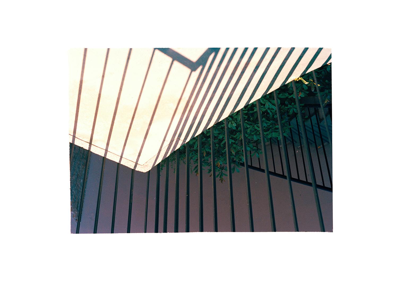 Garden Geometry 2013