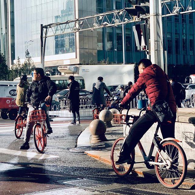 Beijing Bikers. Note-se que as bicicletas são idênticas; produto da mesma empresa. Aqui, diversas companhias disputam o mercado de bike sharing. São milhares espalhadas pela cidade que se pode pegar e largar em qualquer lugar a partir de um app para telefones. Mesmo no inverno (e hoje fazia entre 5C e -1C), o que não falta são pessoas fazendo uso delas. #snapshot #beijing #china #asia #bicycles #bikes #bikesharing #iphonexsmax #iphoneography #iphone — view on Instagram  https://ift.tt/2AaRKVR