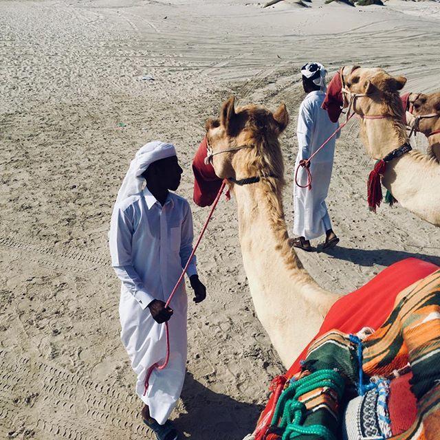 Camel herders. Doha. Catar. Por vinte reais, levam crianças para uma volta de cinco minutos. Por cem reais, deixam se aventurar deserto adentro por cerca de 1h. Armadilha de turista, sem dúvida. Mas, pela quantidade de pessoas e fotos, o negócio parece prosperar  #doha #catar #camel #camelherders #herders #touristtrap #iphone #iphoneography #iphon6s — view on Instagram  https://ift.tt/2HT5BX4