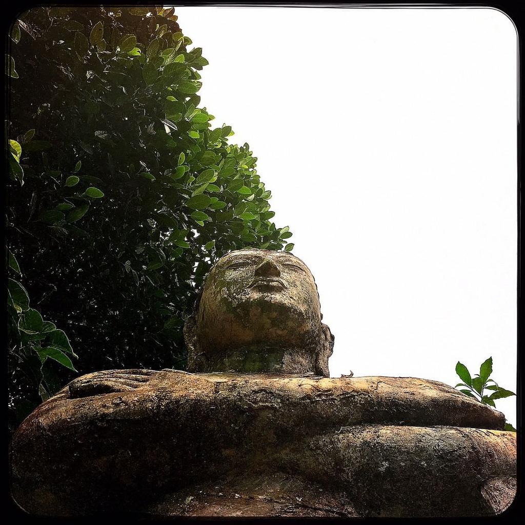 #Hipstamatic #Watts #Love81 #asia #ceylon #Colombo #sri_lanka #buddha #lord #green