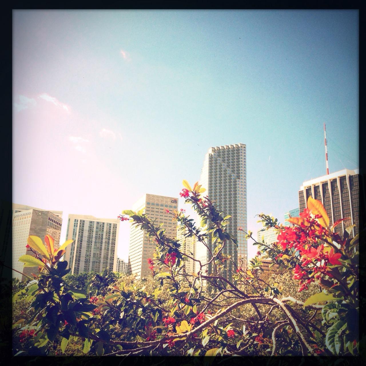 Miami, Saturday morning.