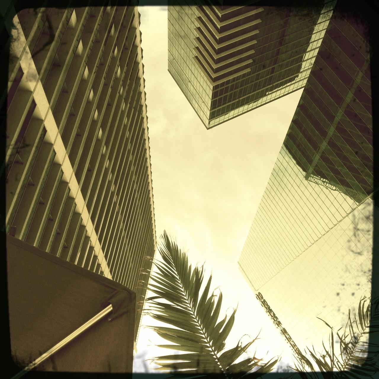 Quadriláteros no verão #miami # downtown # buildings