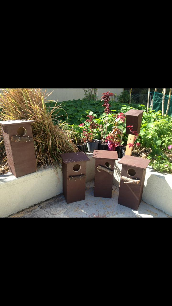 Nesting Boxes at the QT Building Surfers Paradise 2016