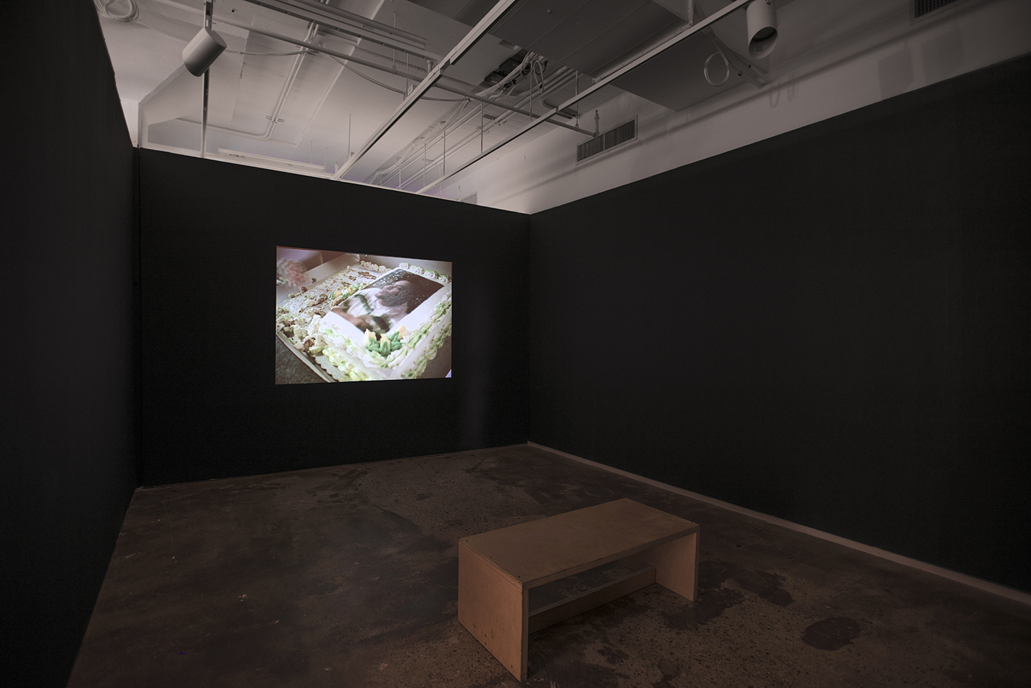 Installation view:  Elective Affinities: A Library , Hunter College Art Galleries, 2017. Kevin Everson,  Vanilla Cake with Strawberry Filling , 2014. Courtesy the artist; Trilobite- Arts DAC; Picture Palace Pictures. Photo by Bill Orcutt.