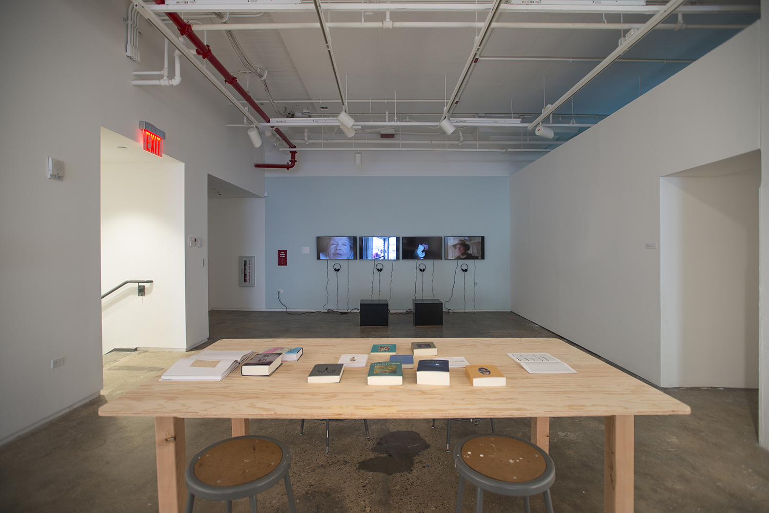 Installation view: Elective Affinities: A Library , Hunter College Art Galleries, 2017. Photo by Bill Orcutt.