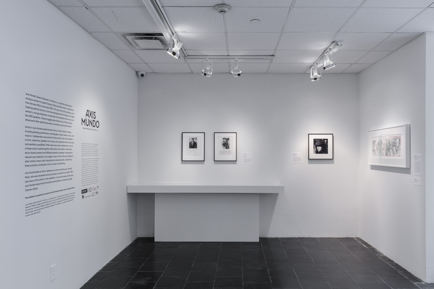 Installation view of  Axis Mundo: Queer Networks in Chicano L.A.  at the Bertha and Karl Leubsdorf Gallery. Photo by Stan Narten.