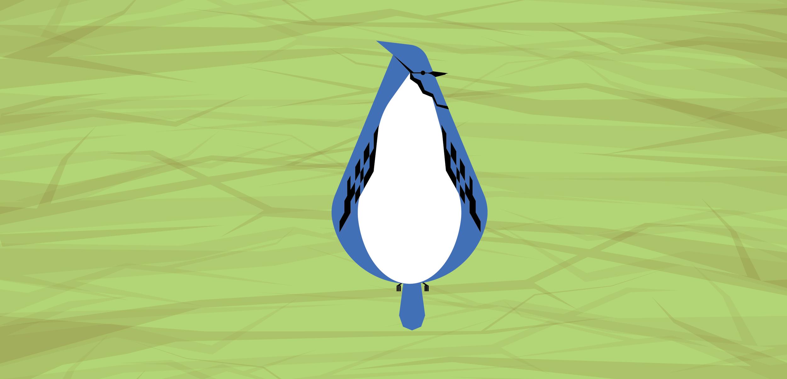 Fat Birds_Blue Jay.png