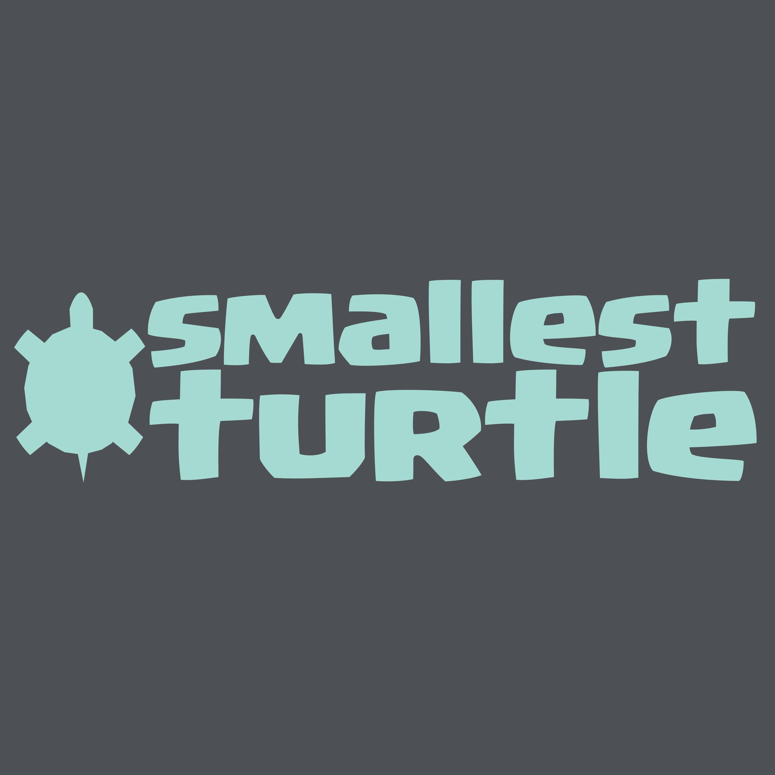 TP00021001 Smallest Turtle Logo.png