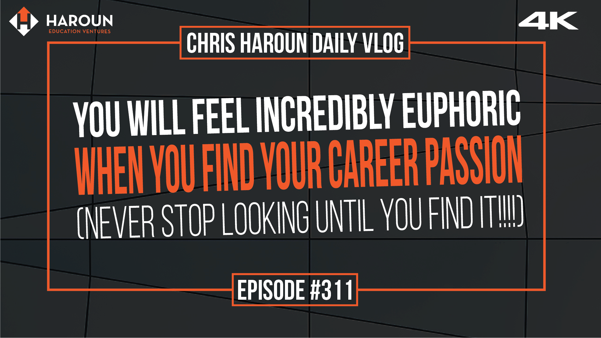 VLOG_311_6_7_2019_You Will Feel INCREDIBLY Euphoric When You Find Your Career Passion (NEVER Stop Looking Until You Find It!!!!).png