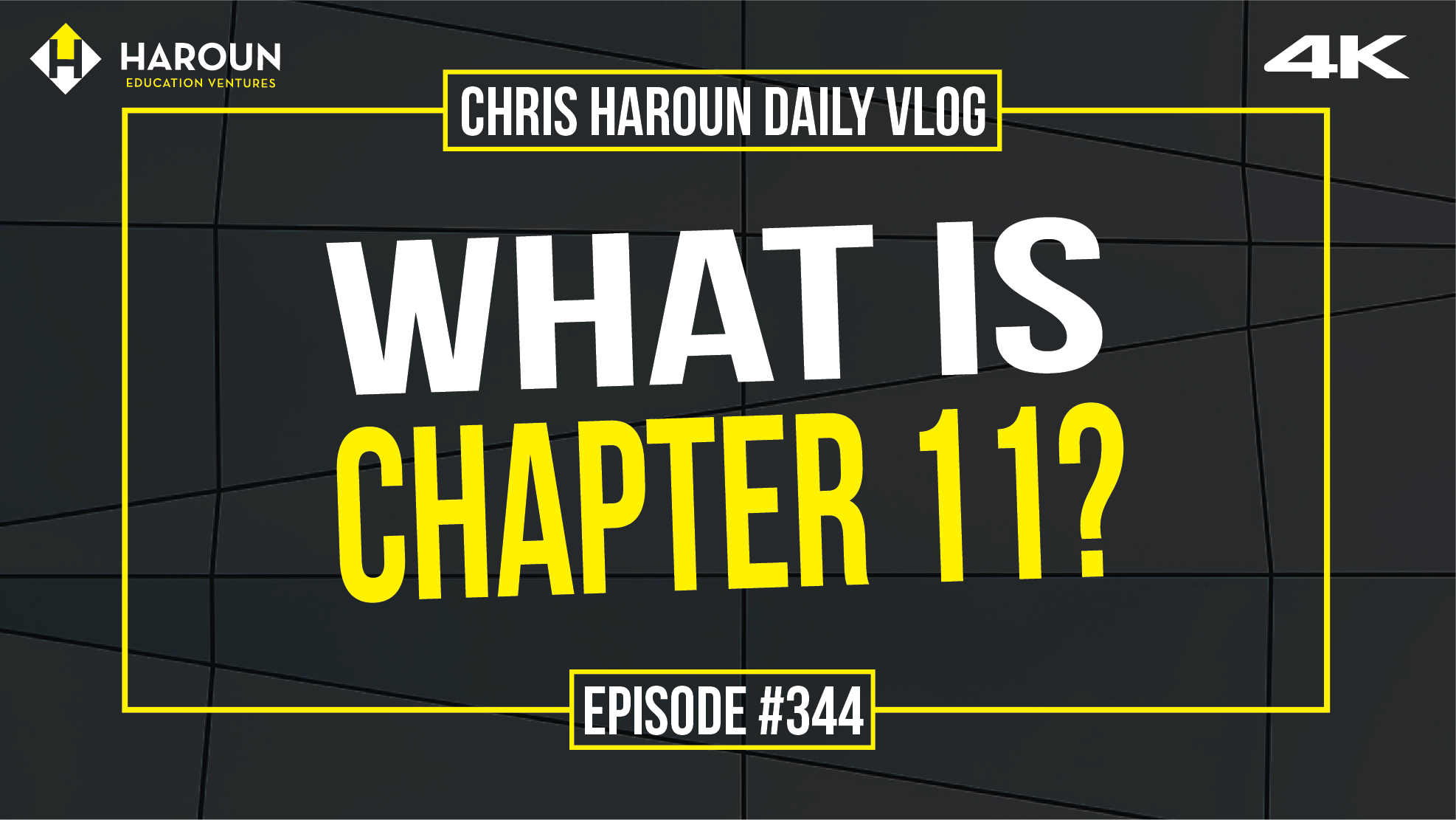 VLOG_344_10_8_2019_What is Chapter 11?.png