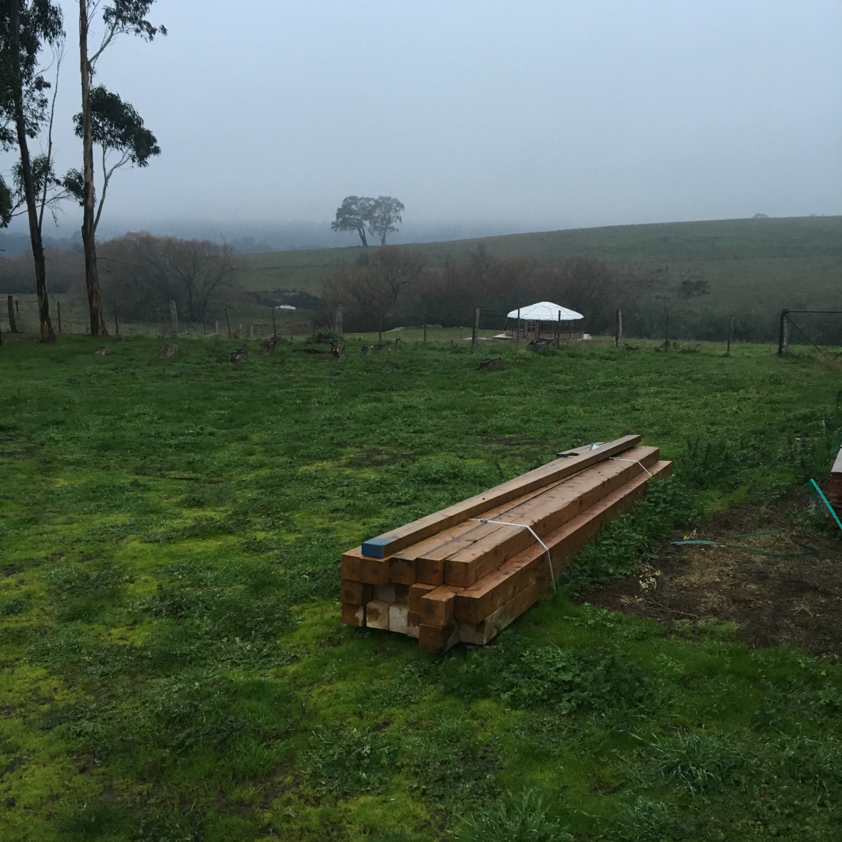 THE YURT AND VEGGIE PATCH ARE NEXT!