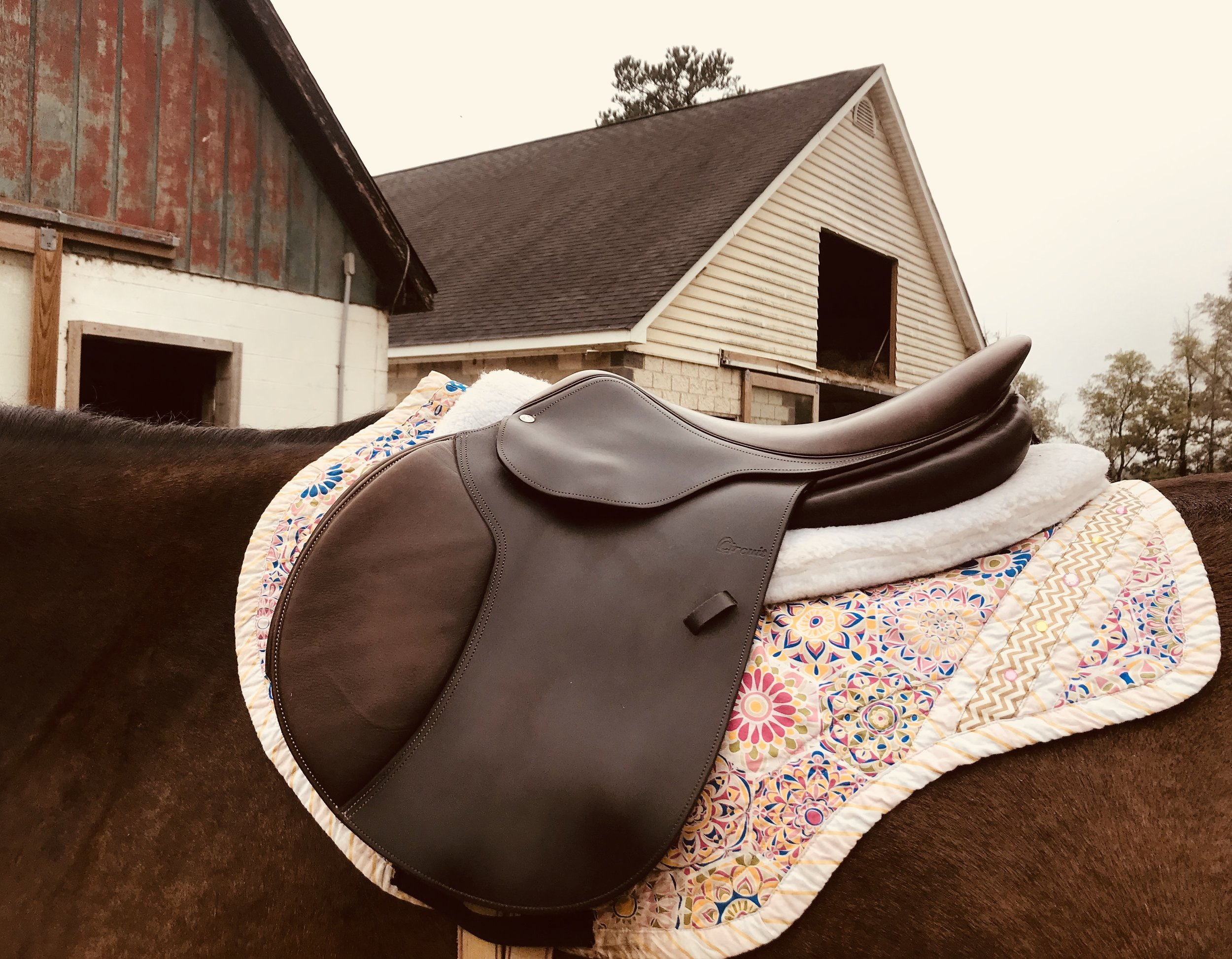 No Stirrups Saddle.jpg