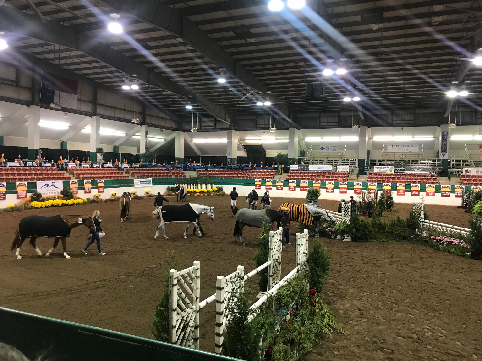 Once the course is set, handlers handwalk horses around the arena.