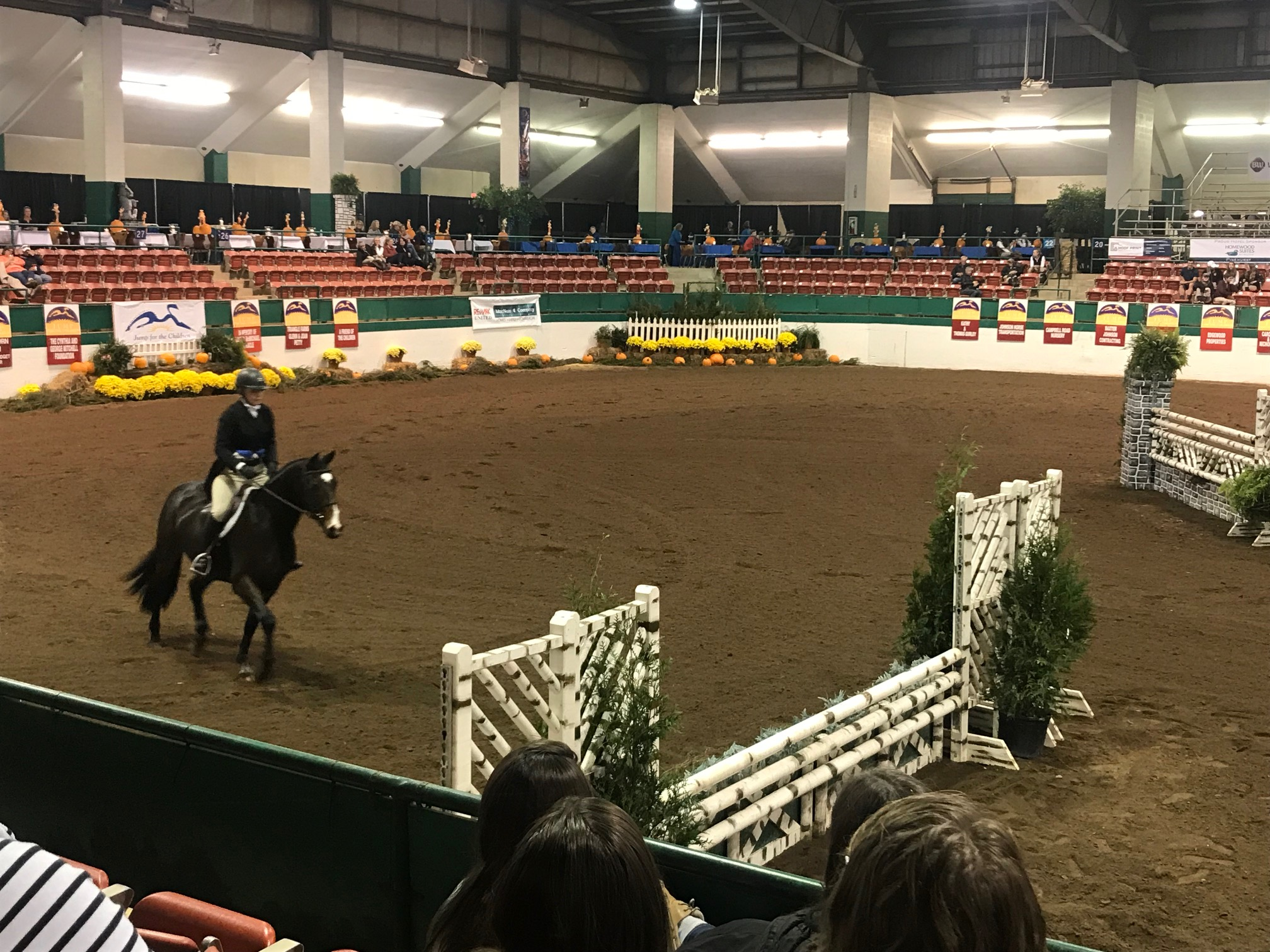 This rider is approaching the trot jump in the handy round.