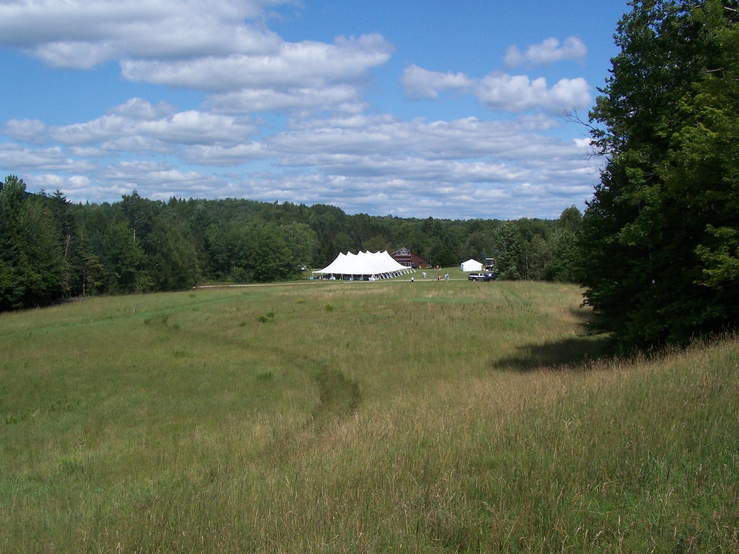 4 Field.jpg