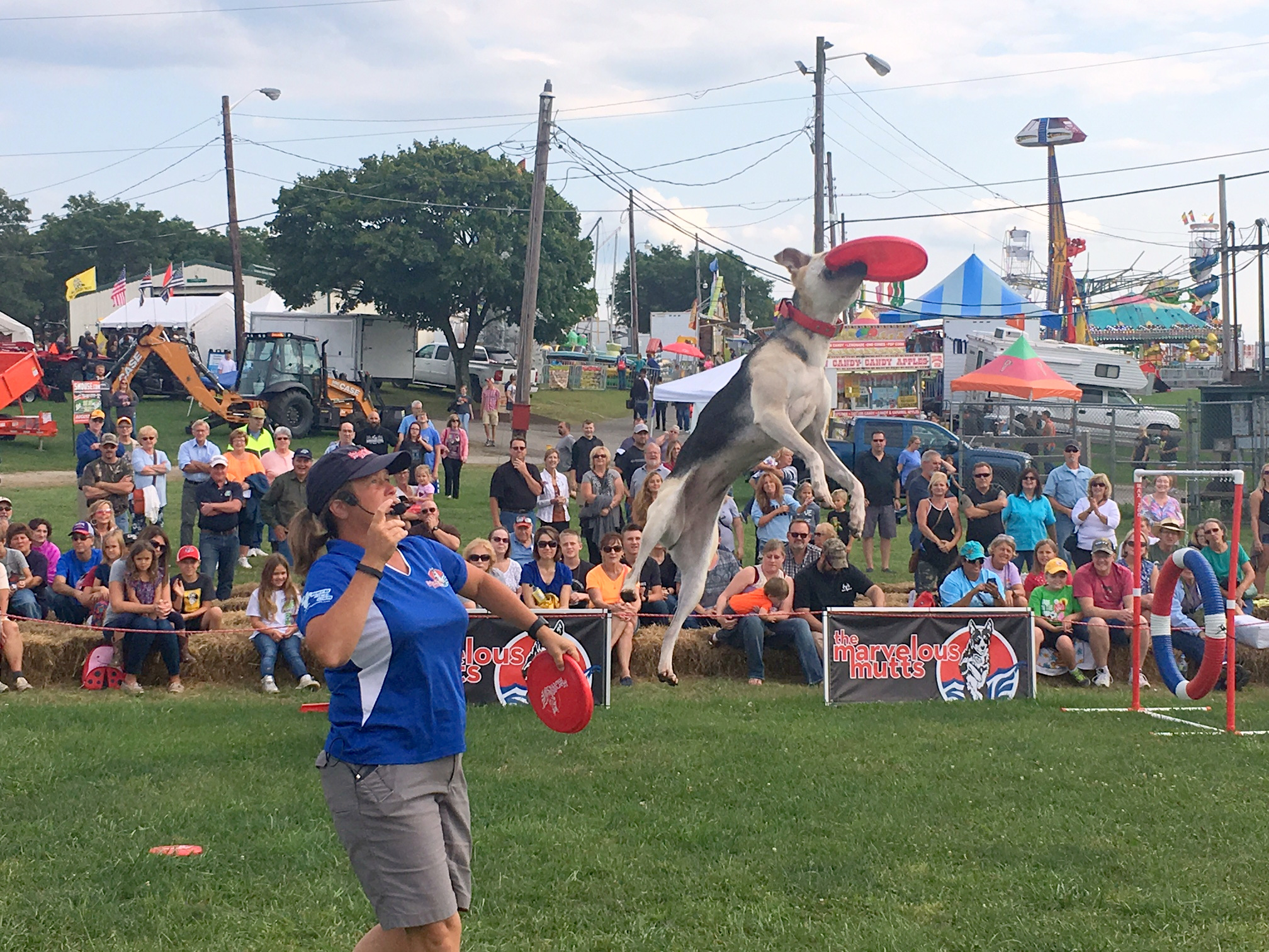 Shazam! wowing the crowd at the Westmoreland Fair!
