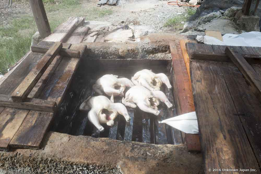 Nansyukan, steamed chicken