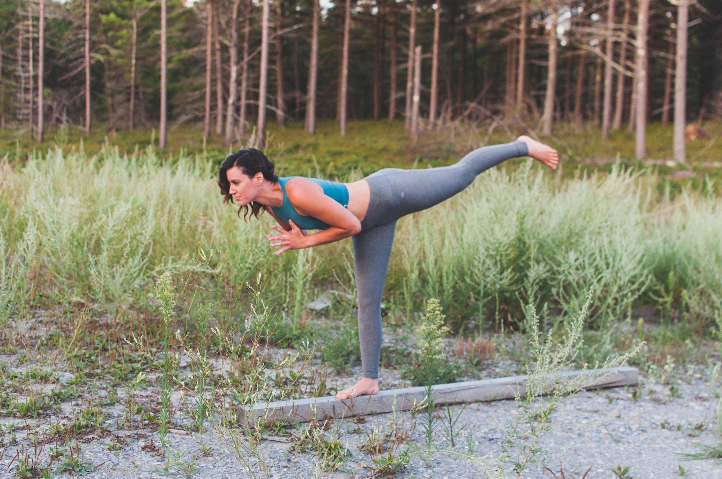 Yoga Classes - Hatha.Vinyasa.Therapeutic.Prenatal