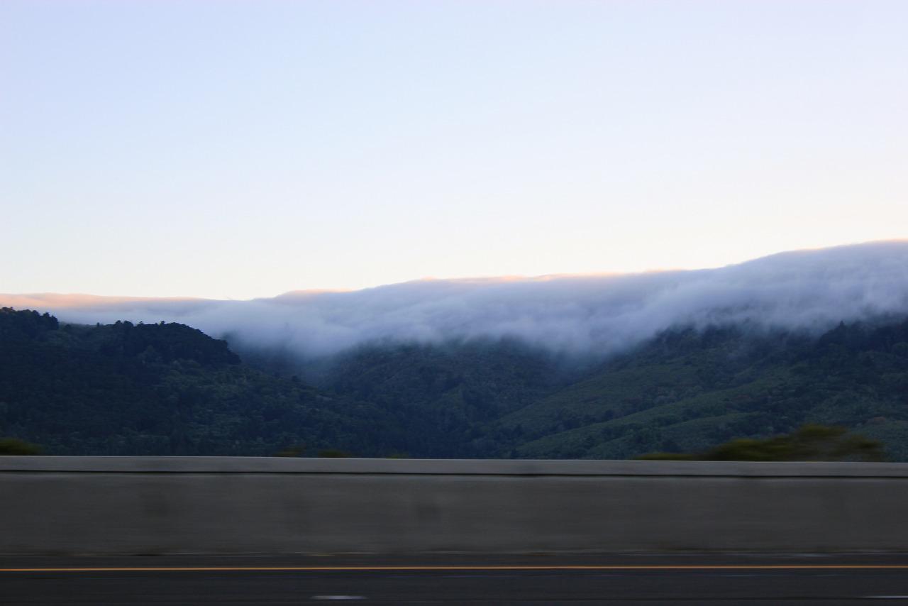 Big Basin Redwoods.
