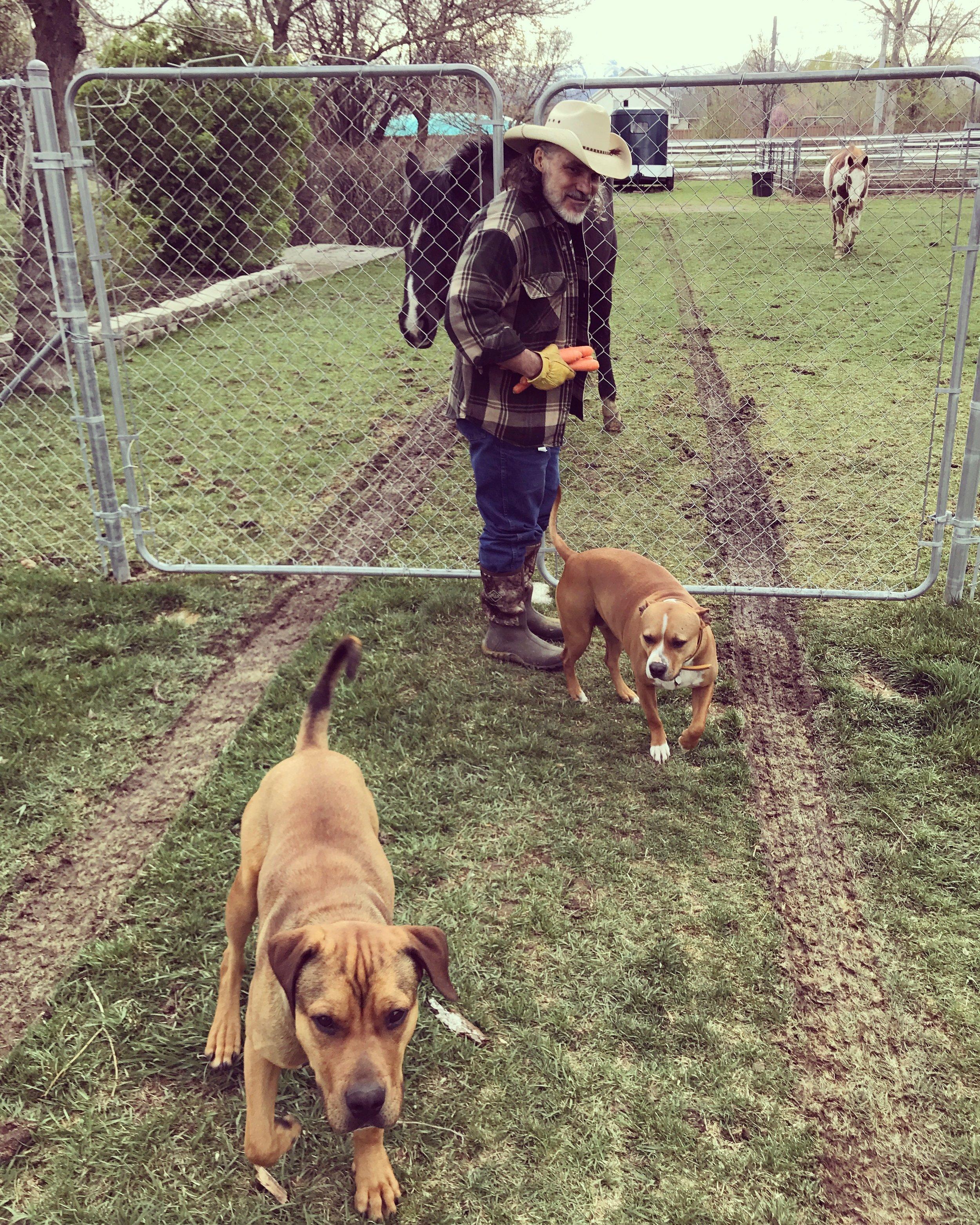 Hat Creek Dog Training_Sandy Utah Dog Training