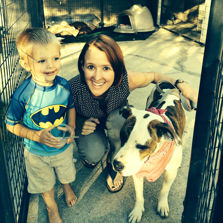 family-dog-training