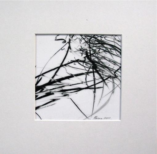 Jaanika Peerna  Alphabet of Lines Series ,2009 wax pencil on mylar 4 3/4 x 4 3/4 in.