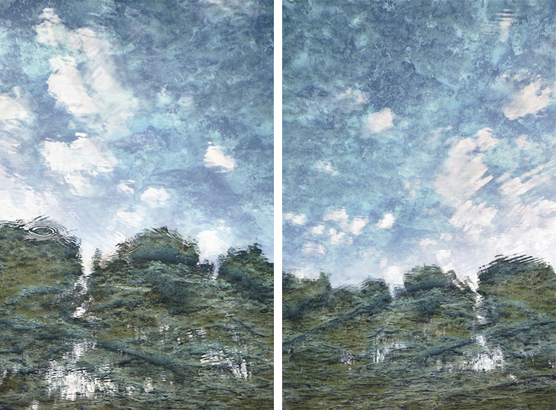 Gustavo Ten Hoever  Increible-Incredible , 2010 c-print diptych 47 1/4 x 31 3/8 in. (each panel) edition 2 of 10