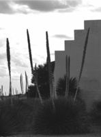 Charles Ruger  Stairway to Judd (Marfa, Texas) , 2004 gelatin silver print 20 x 24 in. 30 x 40 in.