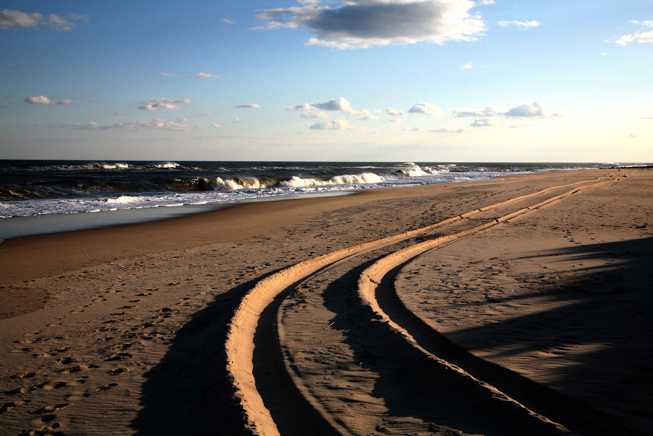 Geoff Reinhard  Fresh Tracks  (East Hampton) archival pigment print 30 x 45 in.  additional sizes available edition of 15