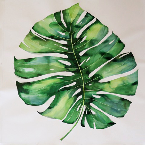 "Idoline Duke   Big Tropical Leaf I, 2016  watercolor on paper  52"" x 52""  SOLD"
