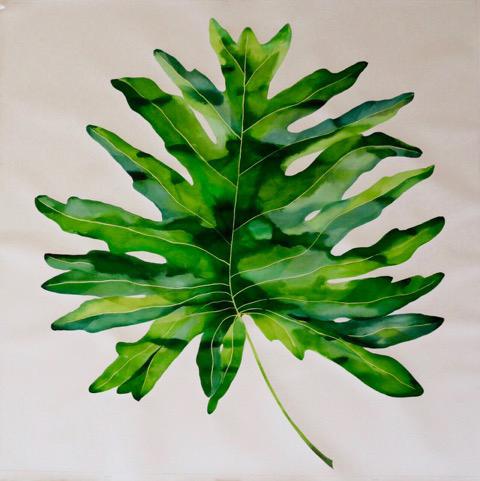 "Idoline Duke   Big Tropical Leaf, 2016  watercolor on paper  52"" x 52"""