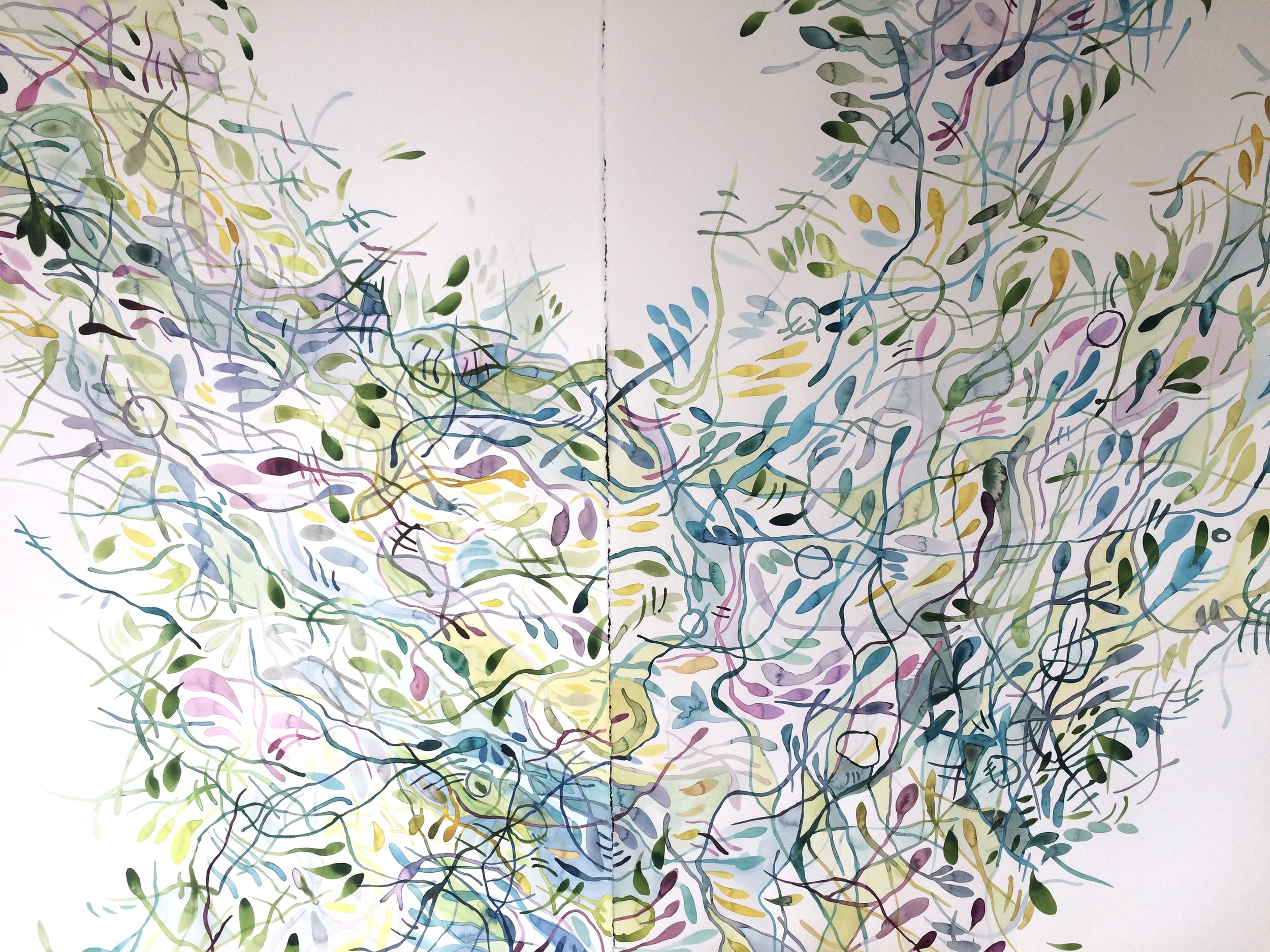 Idoline Duke  Summer Flurry Diptych  watercolor on paper 44 x 60 in.