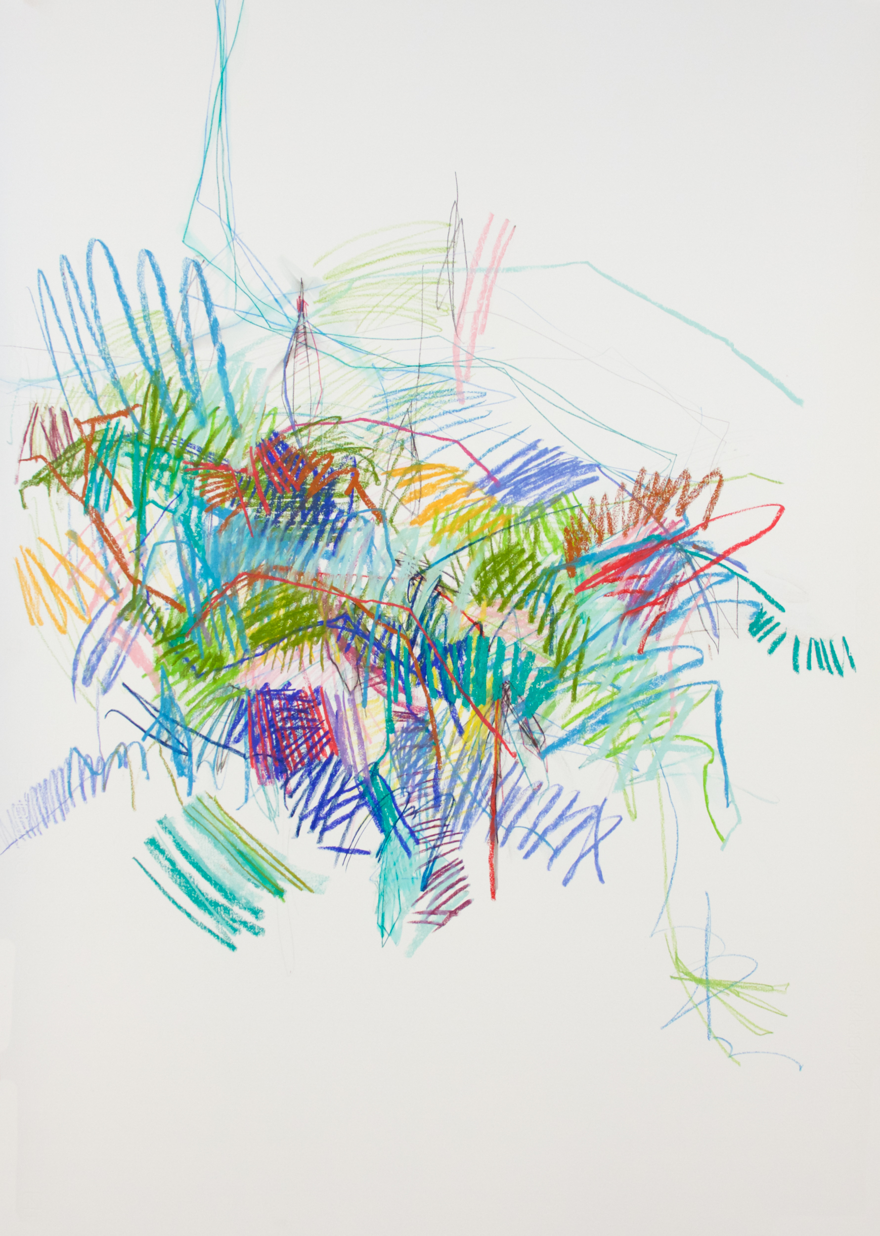 Michael Rich  Thistle,  2017 pastel on paper 39 x 28 in.