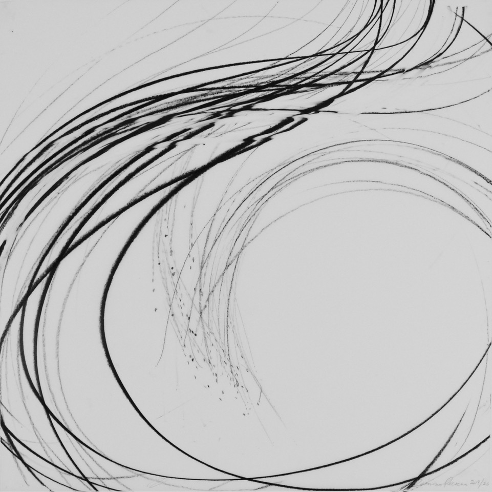 JAANIKA PEERNA  Undulations 26,  2013 pigment pencil on mylar 18 x 18 in.