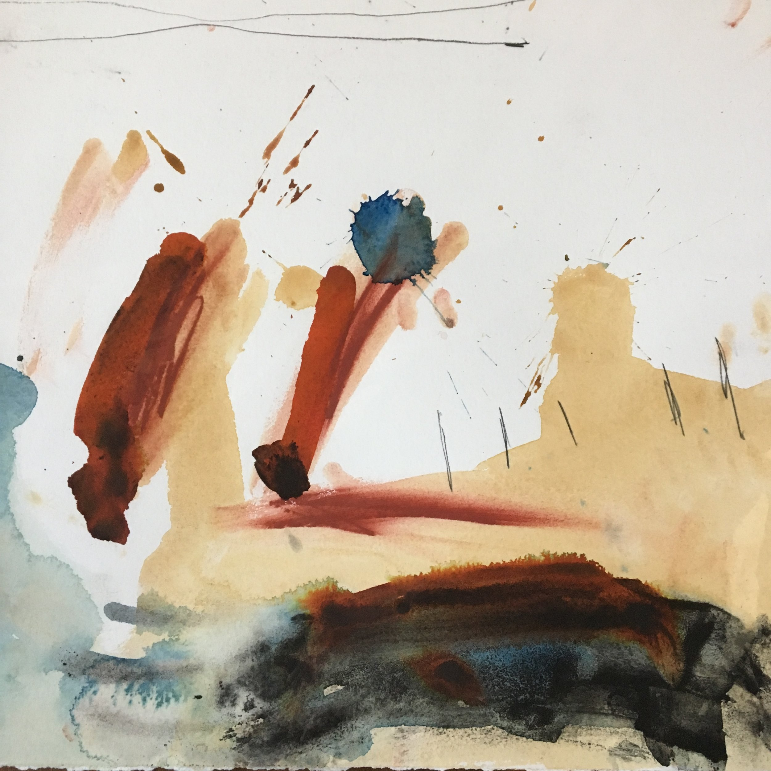 MICHAEL RICH  The Wild Coast II,  2009 mixed media on paper 15 x 16 1/2 in.