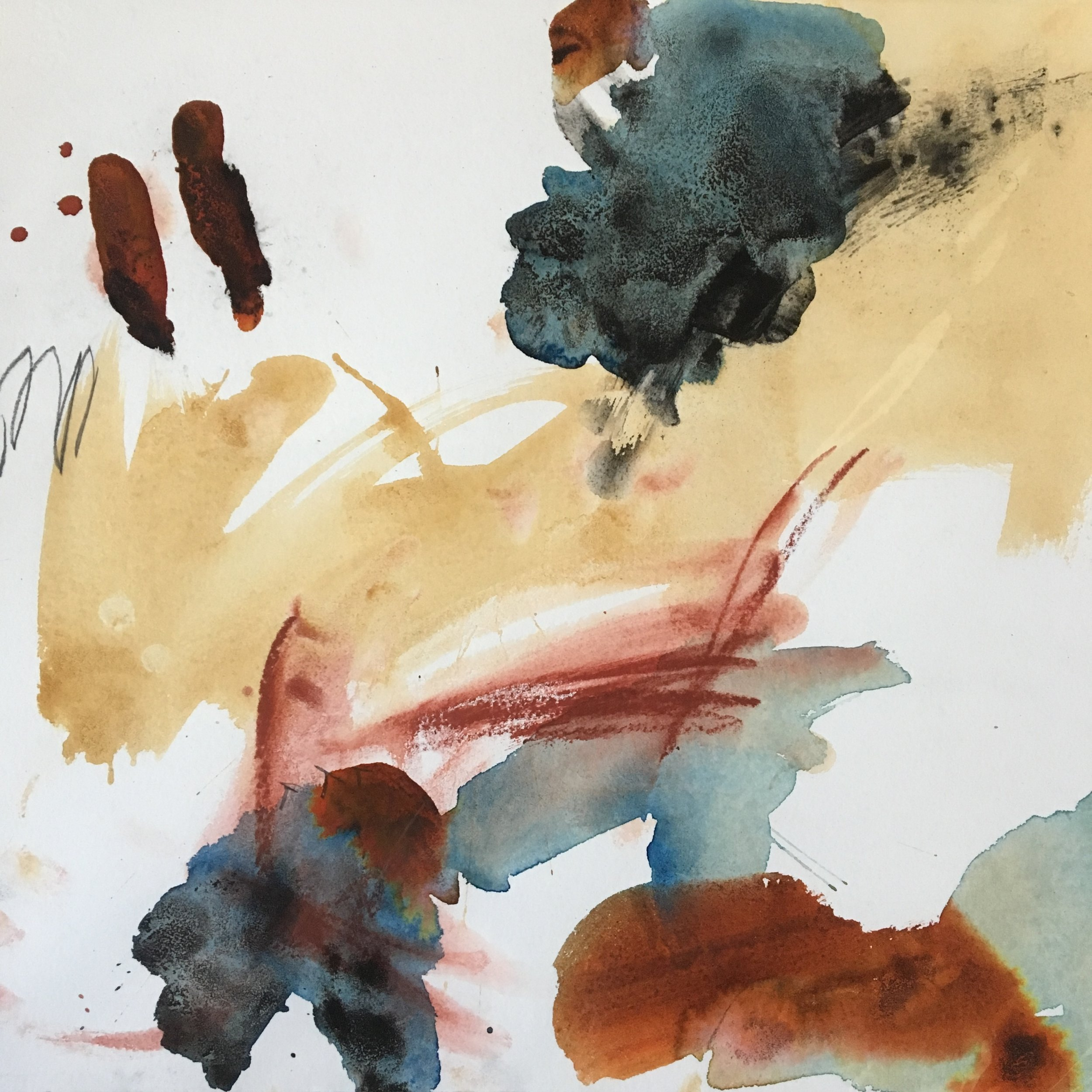 MICHAEL RICH  The Wild Coast I,  2009 mixed media on paper 15 x 16 1/2 in.