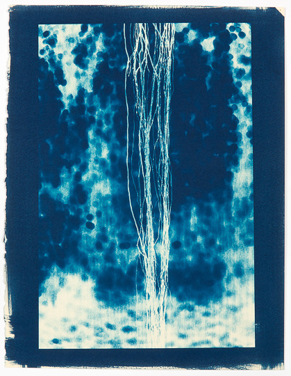 LAURIE LAMBRECHT  Reverse Flow,  2014 cyanotype on rag paper 16 1/2 x 12 1/4 in